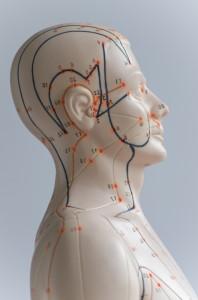 einfluss kiefermuskulatur auf nacken
