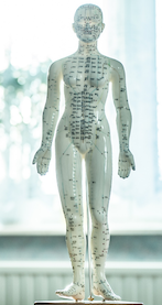 Touch for Health verwendet Elemente aus der traditionellen chinesischen Medizin